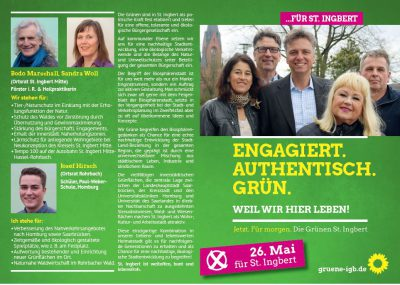 Flyer Grüne IGB